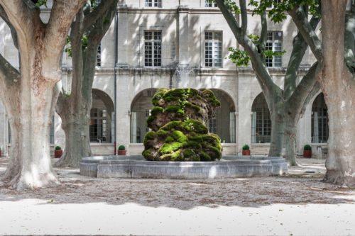 7ème Université d'été de la COFAC