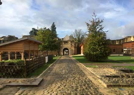 Mission de service civique à Brie-Comte-Robert : Médiation et événementiel